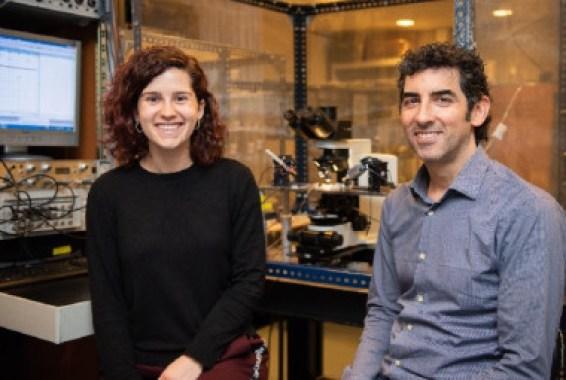 Los investigadores Alba Andrés-Bilbé y Xavier Gasull, de la Facultad de Medicina y Ciencias de la Salud, del Instituto de Neurociencias de la Universidad de Barcelona (UBNeuro) y del Grupo de Investigación en Neurofisiología del IDIBAPS. / UB