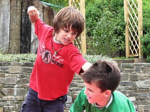 """<p>El trabajo analizasi existen diferencias en la conducta agresiva a lo largo de dos años tanto en niños como en niñas./ <a href=""""https://www.flickr.com/photos/richteabiscuit/876248679/"""" target=""""_blank"""">Aislinn Ritchie</a></p>"""