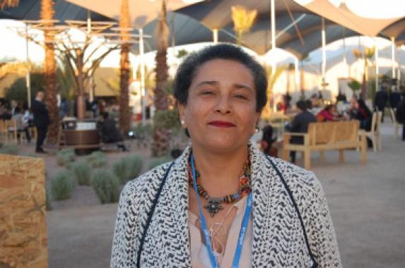 <p>Jamila Bargach, que ha asistido a la Cumbre del Clima de Marrakech, conoce bien el problema al que se enfrentan las mujeres bereberes del sur de Marruecos para recoger agua. Junto a la investigadora canaria María Victoria Marzol ha instalado un sistema de mallas para capturar agua de la niebla. / SINC</p>