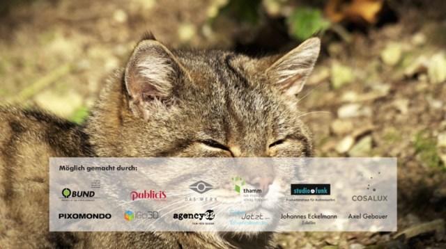 Wildkatzen-Sponsoren