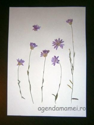 tablou flori presate
