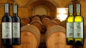 vini antica hirpinia