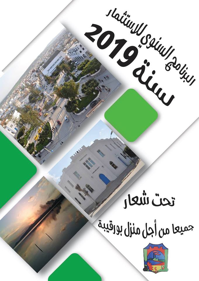 البرنامج السنوي للإستثمار لسنة 2019