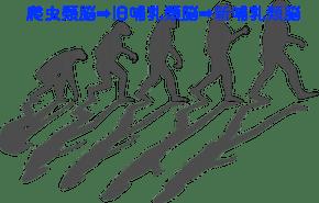進化-1295256_640.png