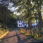 Appartamento Affitto Abetone Via Bar Alpino Tre Vani Mq 80 (6)
