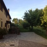 Villa Leopoldina Mq 400 Firenze Pontassieve 15 vani terreno 2,5 Ettari (37)