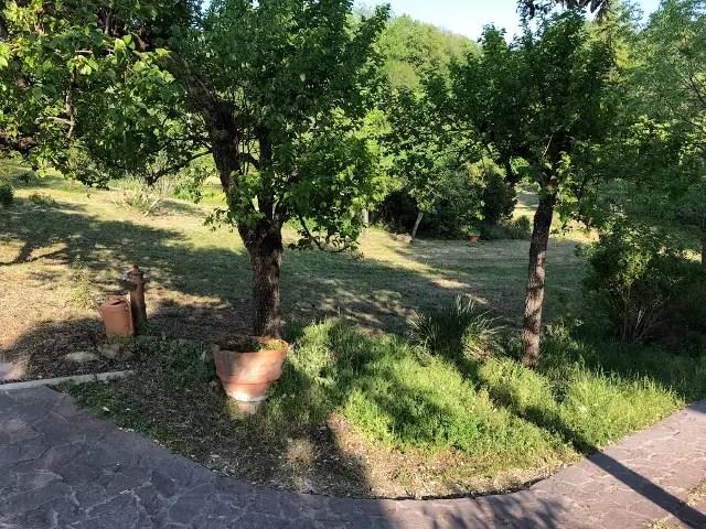 Villa Leopoldina Mq 400 Firenze Pontassieve 15 vani terreno 2,5 Ettari (99)