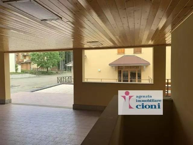 Bilocale Parco dei Daini Faidello Mq 40 Cantina (38)