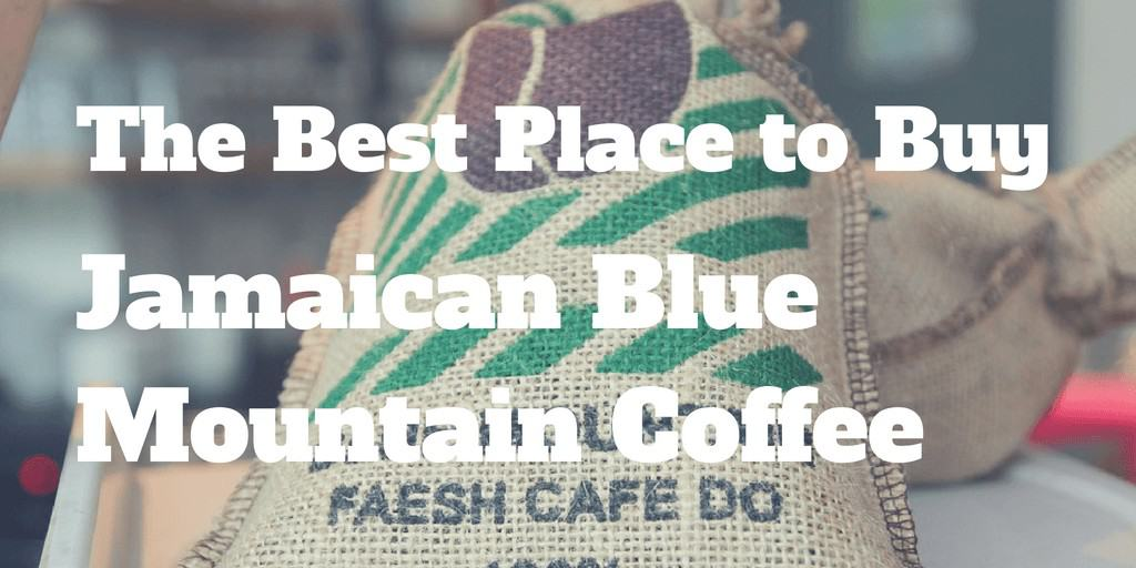 Best Jamaican Blue Mountain