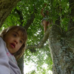 Poppy, Josie's younger sister, looking at Niamh (on a lower branch) with Josie and me somewhere in the branches higher up.