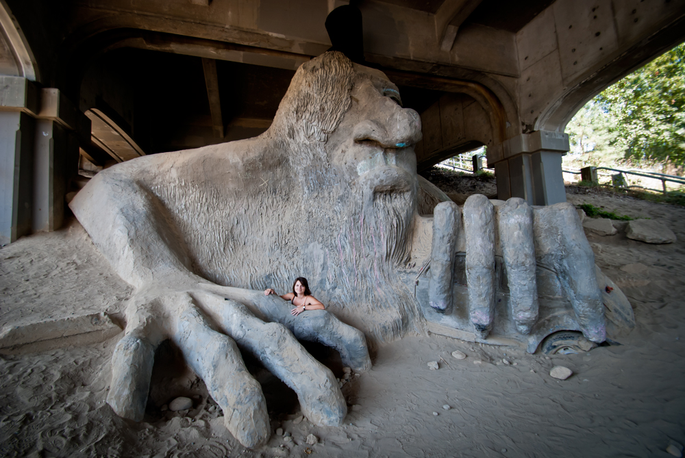 seattle product owner fremont troll