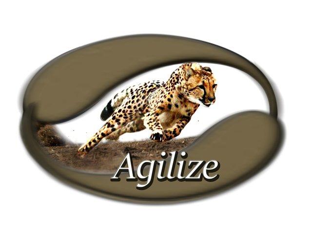 Agilize