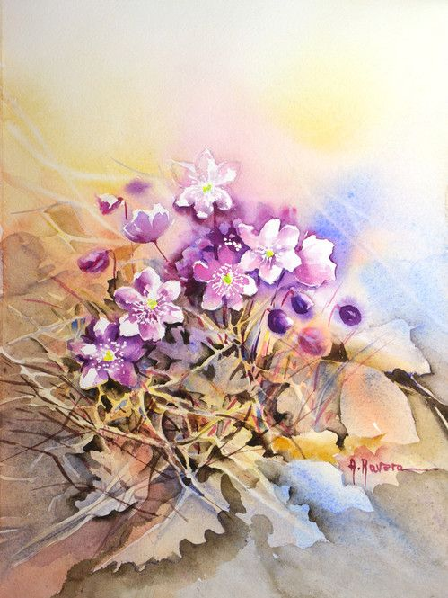 Anna Ravera WATERCOLOR
