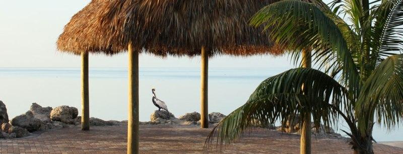 Carefree Resorts