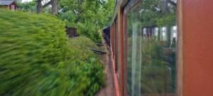 Skogen speglar sig i vagnssidan. Foto: Anders Martinsson