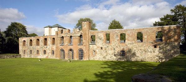 Slottsruinen i Gräfsnäs