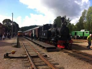 Museibanans Dag 2014. BLJ 6 står vid tåget. Foto: Patrik Engberg