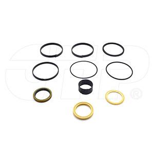 Case Seal Kit, 1543273C1