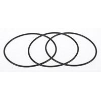 International Navistar DT360 Liner O-Ring Kit 1809938C1