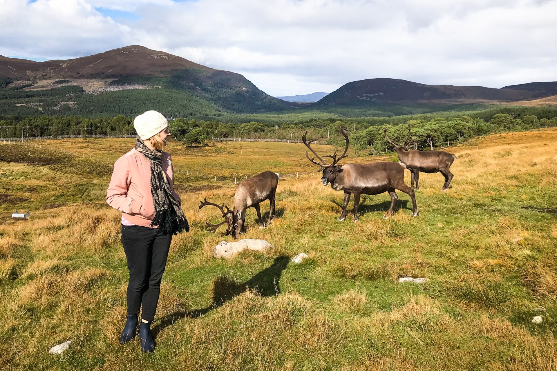 My best ever wildlife adventure: Making friends with reindeer in Scotland