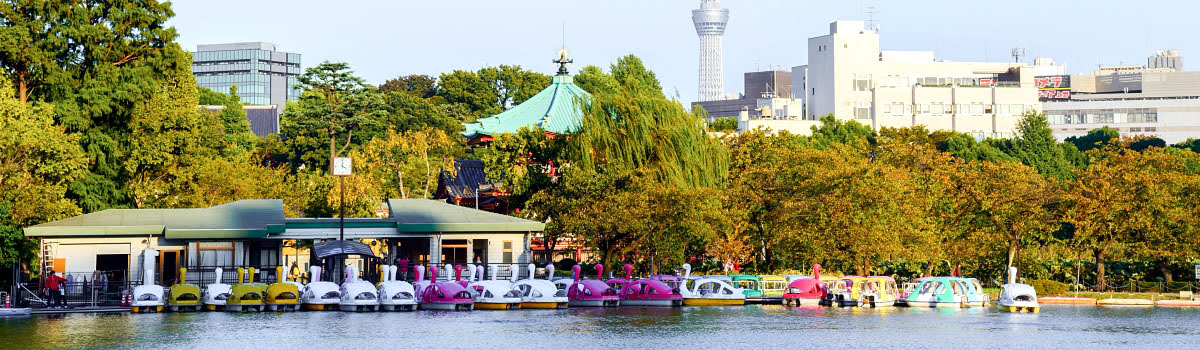 People riding paddle boats in Ueno Park, Tokyo