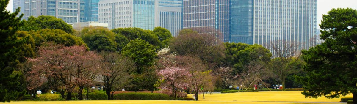Tokyo itinerary-Tokyo-Featured photo (1200x350) The East Gardens at The Imperial Palace