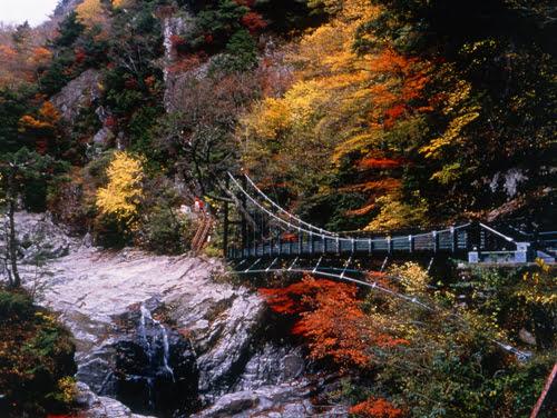 Autumn in Nara-Mitarai Valley