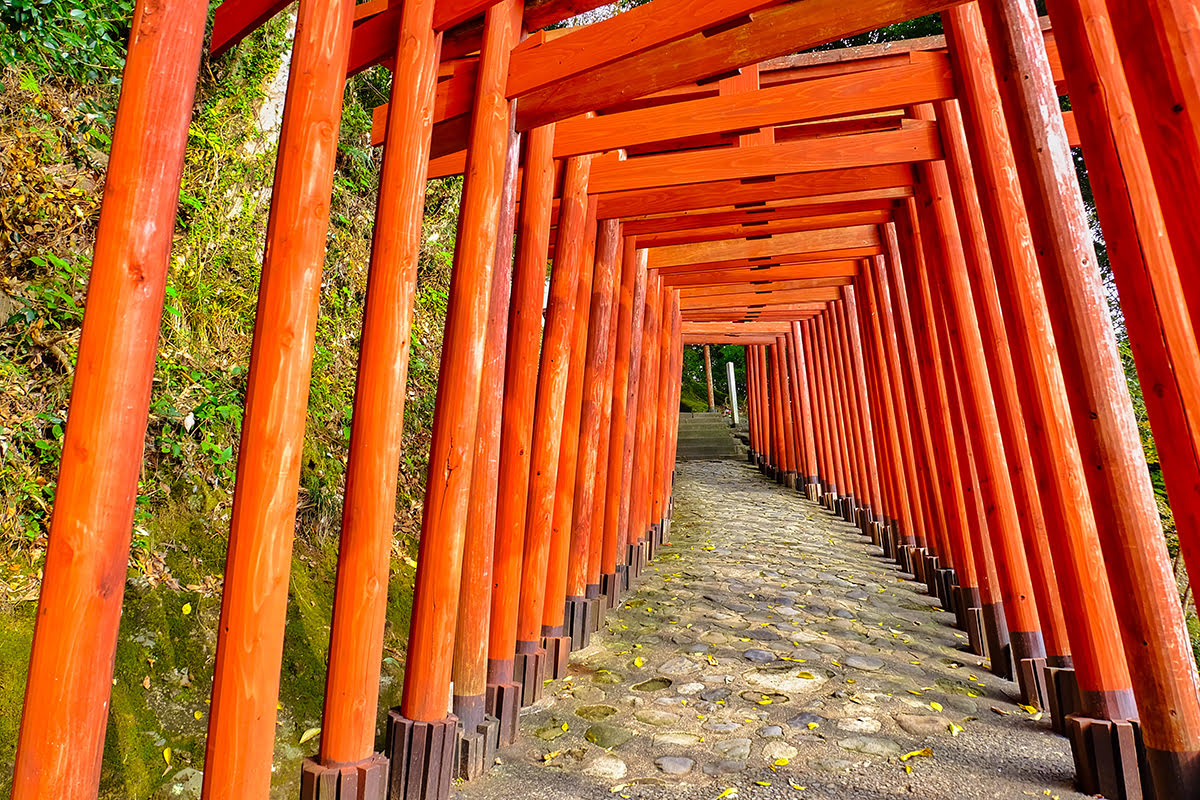 Things to do in Kyushu-Japan-Red Torii