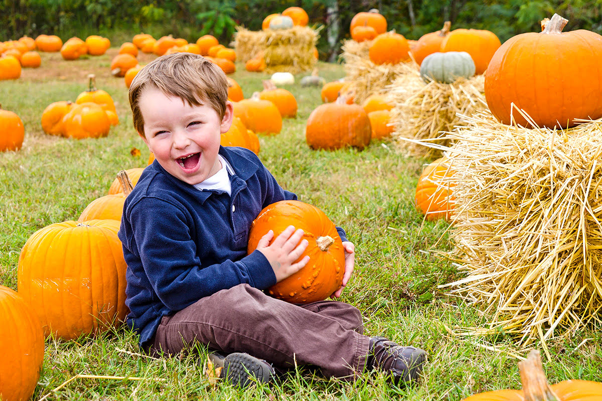 Pumpkin patches-fun fall activities for families-Piglets Adventure Farm