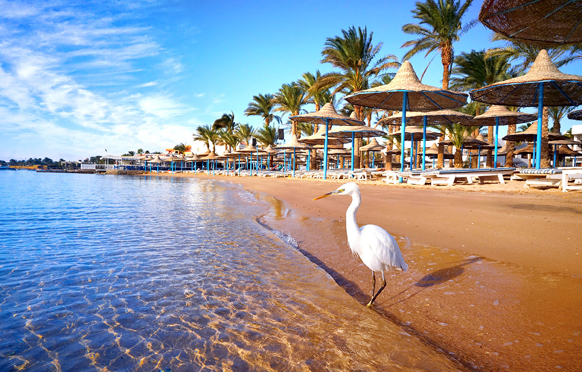 Attractions in Egypt-Red Sea Coast-Hurghada