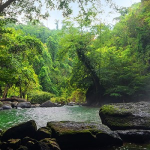 Khao Yai National Park, تايلاند