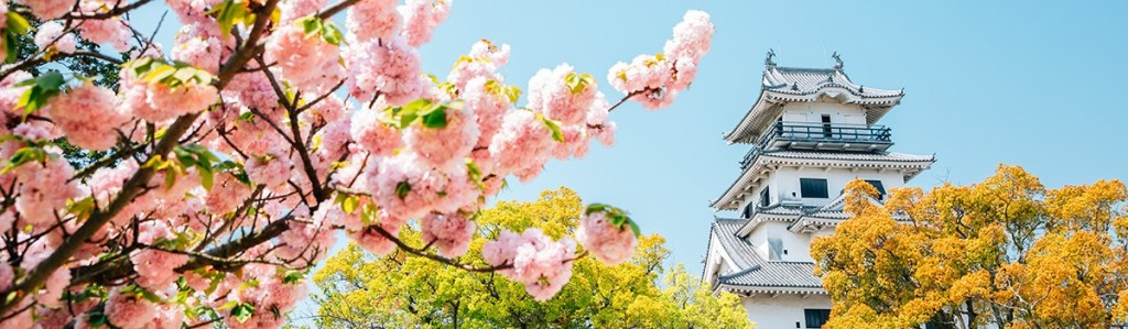 There's never been a better time to visit Ehime