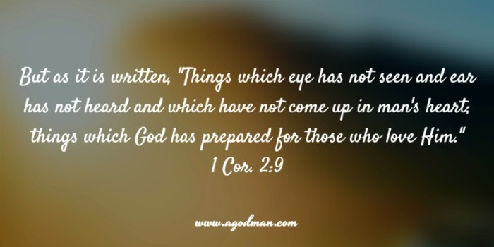 "1 Cor. 2:9 But as it is written, ""Things which eye has not seen and ear has not heard and which have not come up in man's heart; things which God has prepared for those who love Him."""