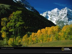 the divine life in us enables us to be functioning members of the Body of Christ, the divine organism [picture source: Trees and Mountains, National Geographic]