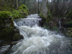 we need to see the divine stream and keep ourselves in the unique flow of God today! [picture source: water at the Scottish Border]