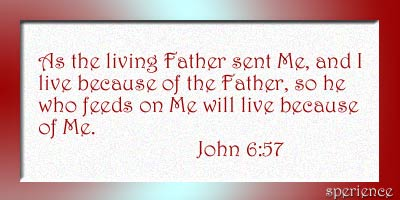 John 6:57 is such a good yet mysterious verse. As the living Father has sent Me (the Father has send Christ the Son) and I live because of the Father (this is the work: living because of the Father).