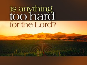 A Man of Prayer Waits Constantly Before God and Intercedes for What's on His Heart