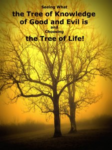 Seeing What the Tree of Knowledge of Good and Evil is and Choosing the Tree of Life!