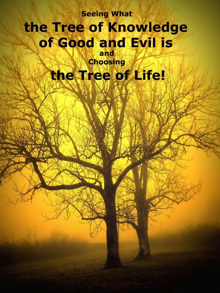 Seeing What the Tree of Knowledge of Good and Evil is and