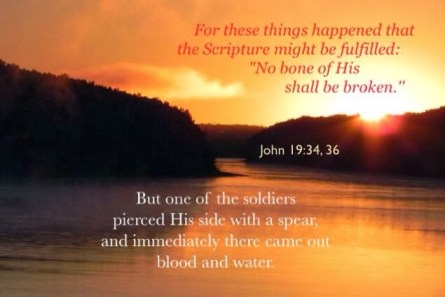 """John 19:34 But one of the soldiers pierced His side with a spear, and immediately there came out blood and water.... v. 36 For these things happened that the Scripture might be fulfilled: """"No bone of His shall be broken."""""""