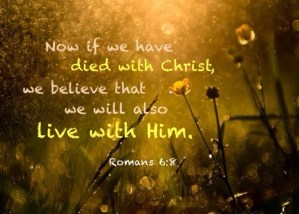 Being Identified with Christ in His Death and Resurrection to Live the Church Life