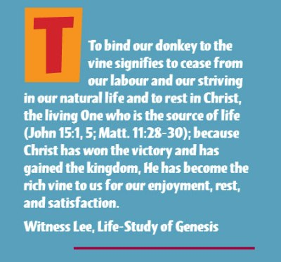 To bind our donkey to the vine signifies to cease from our labour and our striving in our natural life and to rest in Christ, the living One who is the source of life (John 15:1, 5; Matt. 11:28-30); because Christ has won the victory and has gained the kingdom, He has become the rich vine to us for our enjoyment, rest, and satisfaction. (Witness Lee, Life-Study of Genesis)