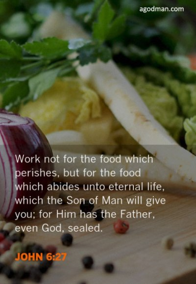 Work not for the food which perishes, but for the food which abides unto eternal life, which the Son of Man will give you; for Him has the Father, even God, sealed. John 6:27