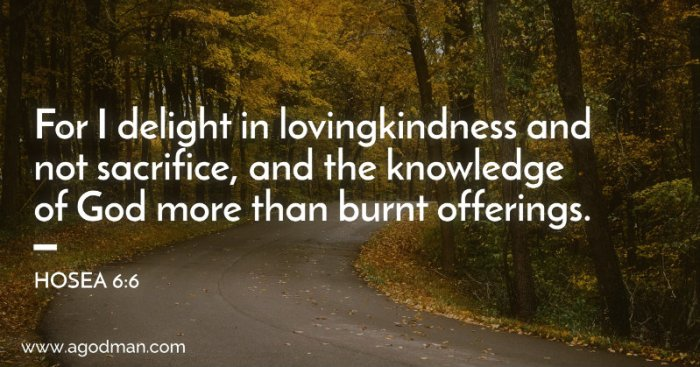 Hosea 6:6 For I delight in lovingkindness and not sacrifice, and the knowledge of God more than burnt offerings.