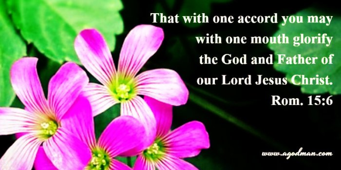 Rom. 15:6 That with one accord you may with one mouth glorify the God and Father of our Lord Jesus Christ.