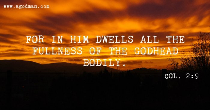 Col. 2:9 For in Him dwells all the fullness of the Godhead bodily.