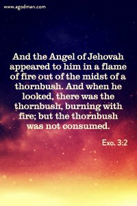 The Blood of the Covenant Enables us to Serve God with the Divine Fire Indwelling us