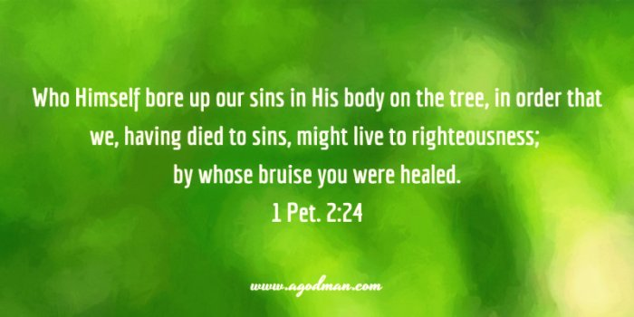 1 Pet. 2:24 Who Himself bore up our sins in His body on the tree, in order that we, having died to sins, might live to righteousness; by whose bruise you were healed.