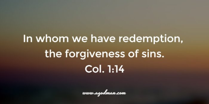 Col. 1:14 In whom we have redemption, the forgiveness of sins.
