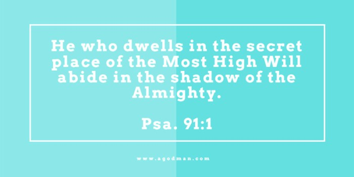Psa. 91:1 He who dwells in the secret place of the Most High Will abide in the shadow of the Almighty.